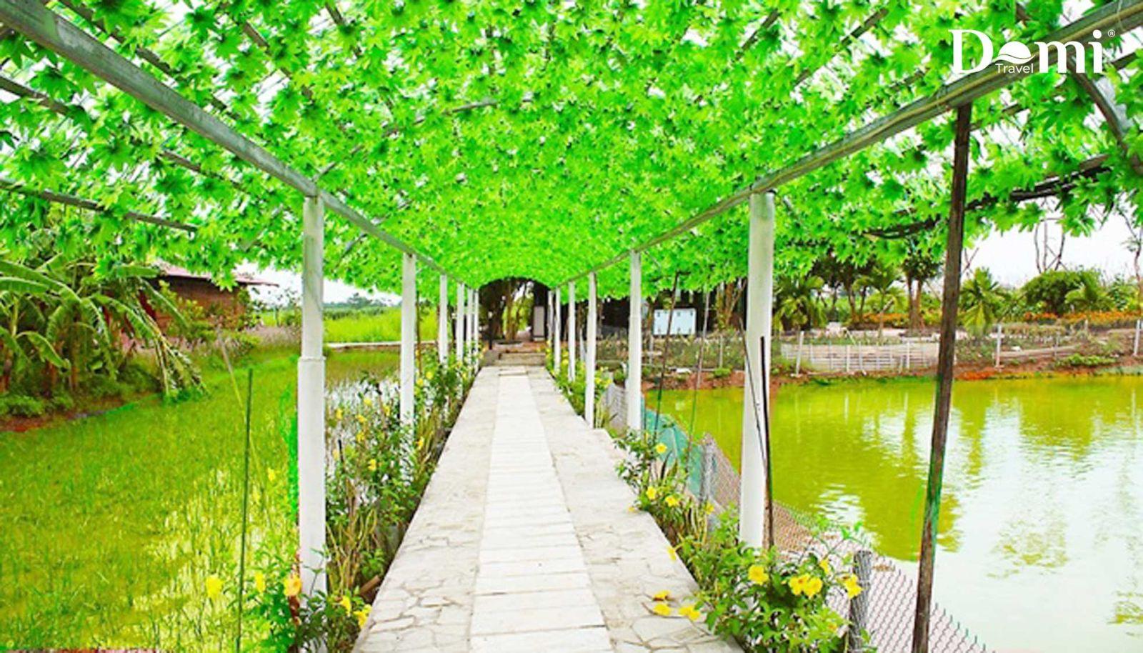 Nông trại Xanh Eco Farm - Du lịch FLC Vĩnh Phúc